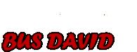 Bus-David